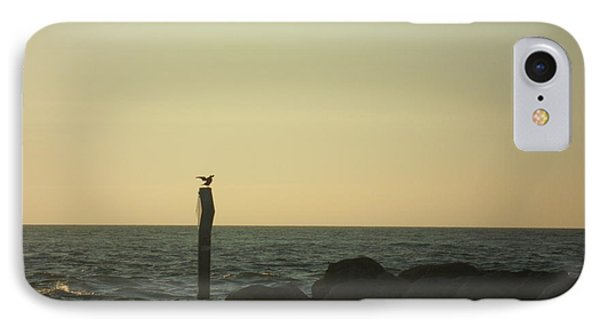Sea Bird Landing IPhone Case by Val Oconnor