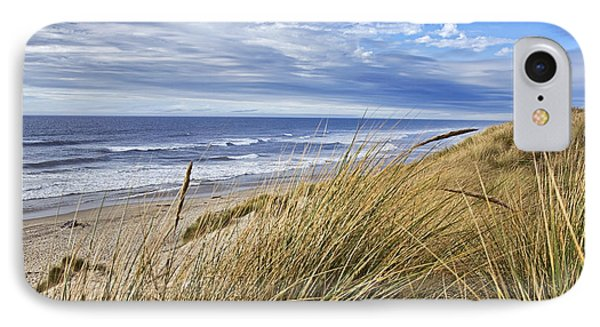 Sea Grass And Sand Dunes IPhone Case