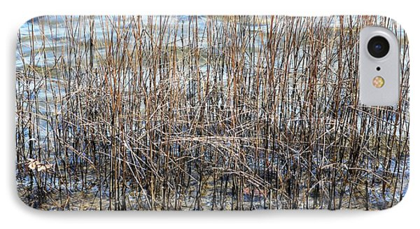 IPhone Case featuring the photograph Sea Grass by Judy Palkimas