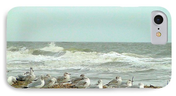 Sea Gulls In Windy Surf IPhone Case by Cindy Croal