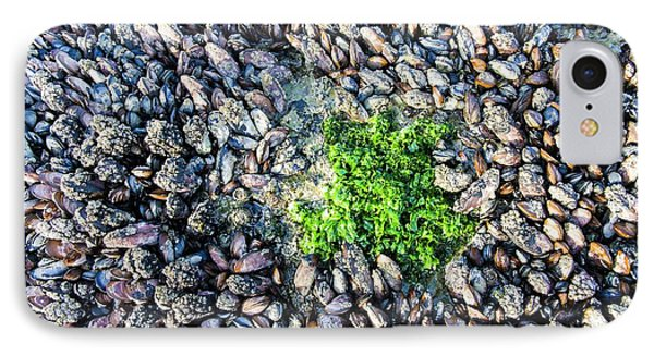 Sea Lettuce And Mussels IPhone Case