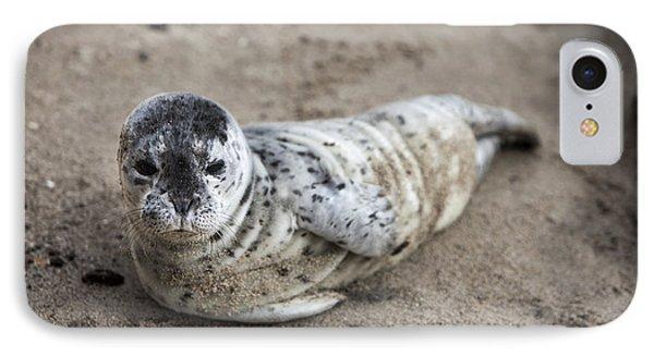 Seal Baby Phone Case by David Millenheft