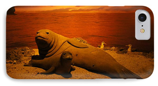 Sea Lion Pup With Mom IPhone Case by Art Spectrum