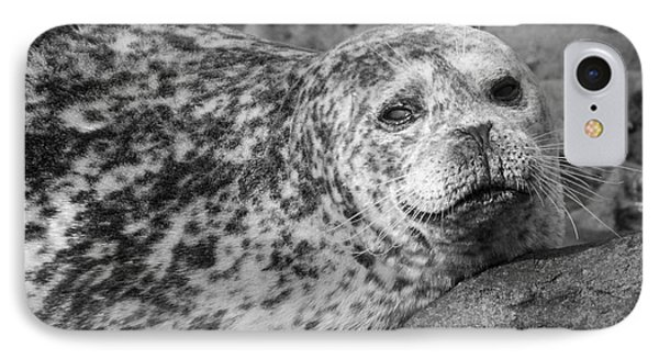 Sea Lion Stare In Monochrome Phone Case by Darleen Stry