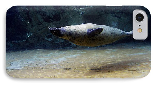 IPhone Case featuring the photograph Sea Lion Swimming Upsidedown by Verana Stark