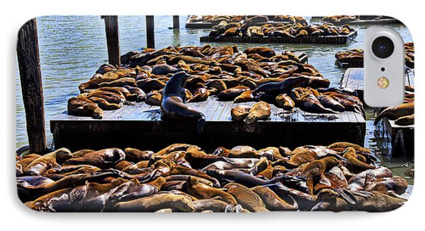 Sea Lions At Pier 39  Phone Case by Garry Gay