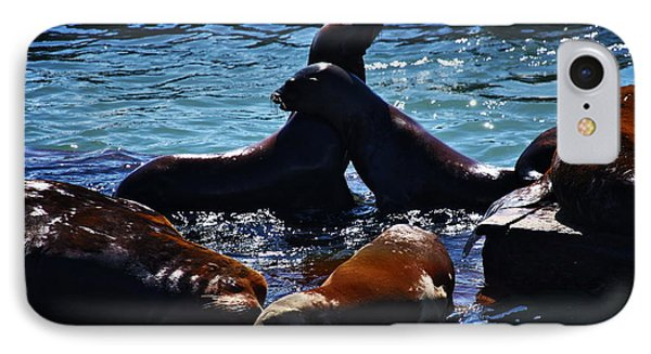 Sea Lions In San Francisco Bay Phone Case by Aidan Moran