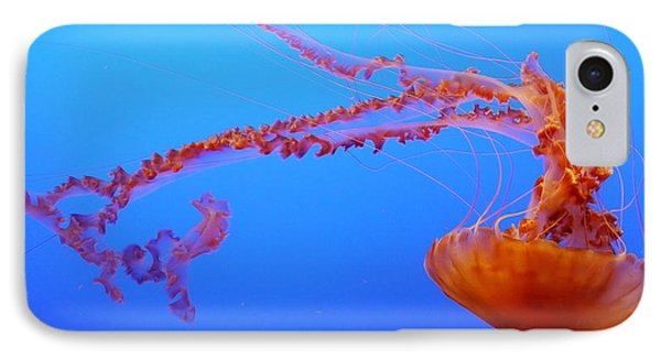Sea Nettle Jellyfish IPhone Case