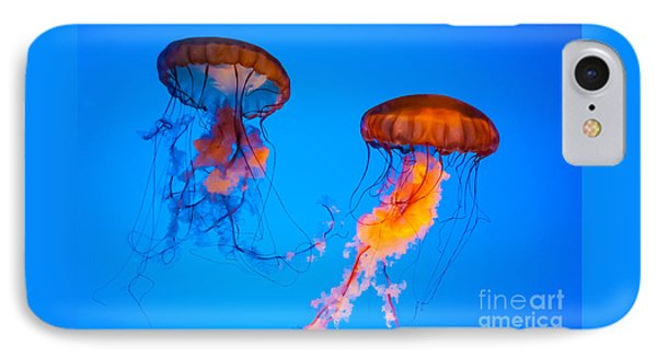 Sea Nettles Phone Case by Anthony Sacco