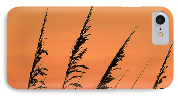 Sea Oat Sunset Phone Case by JC Findley