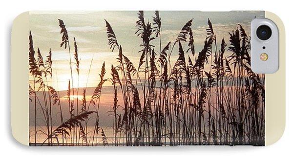 Fabulous Blue Sea Oats Sunrise IPhone Case by Belinda Lee