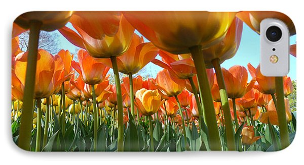 IPhone Case featuring the photograph Sea Of Orange by Dan Myers