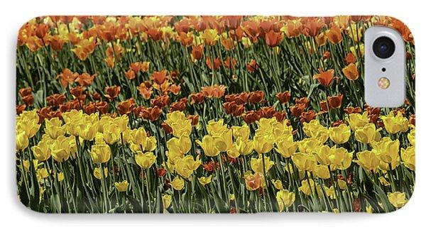 Sea Of Tulips Phone Case by LeeAnn McLaneGoetz McLaneGoetzStudioLLCcom