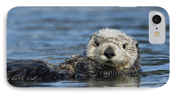 Sea Otter Alaska IPhone 7 Case by Michael Quinton