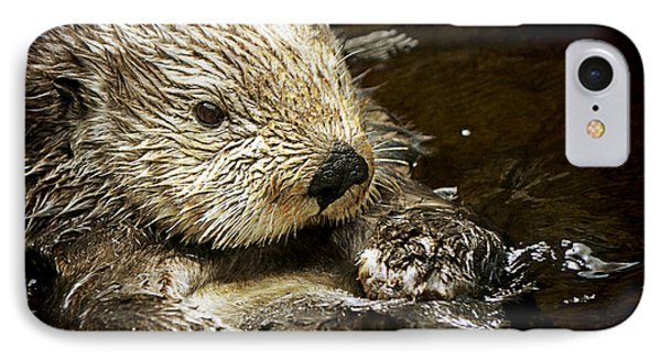 Sea Otter IPhone Case by Maria Angelica Maira