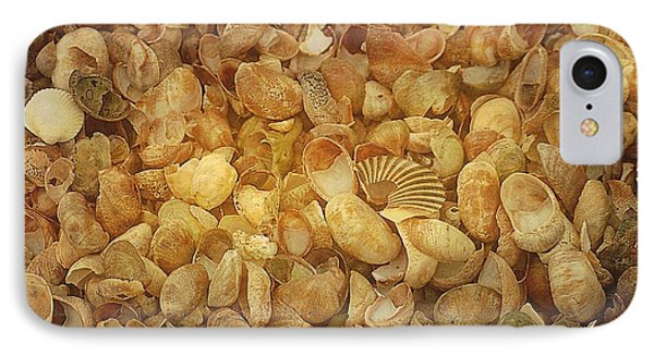 Seashells Red River Beach Harwich Cape Cod Ma Phone Case by Suzanne Powers