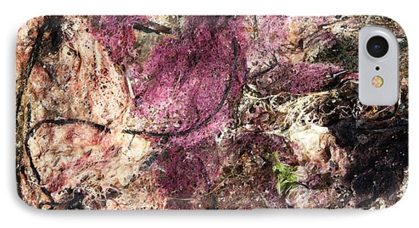 IPhone Case featuring the photograph Sea Weed by Brooke T Ryan