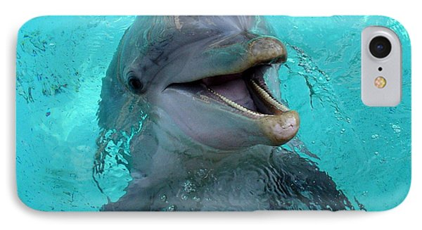 IPhone Case featuring the photograph Sea World Dolphin by David Nicholls