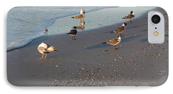 Seabirds IPhone Case by Deborah DeLaBarre