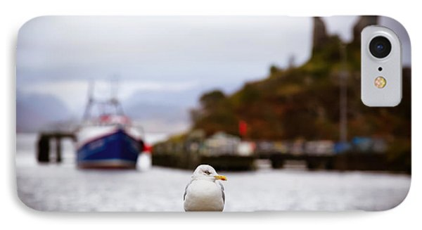 Seagull At Moil Castle IPhone Case by Jane Rix