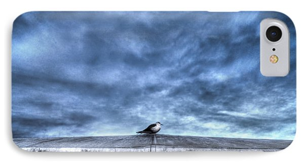 Seagull At Rest IPhone Case by Rafael Quirindongo
