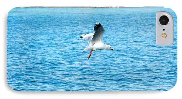 Seagull At St Kilda IPhone Case by Yew Kwang