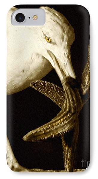 Seagull Dancing With A Star IPhone Case by Carol F Austin