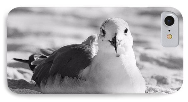 IPhone Case featuring the photograph Seagull by Elizabeth Budd