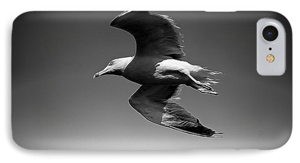 Seagull Flying Higher  IPhone Case by Stefano Senise