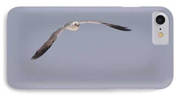 IPhone Case featuring the photograph Seagull In Flight Against A Blue Sky by Charles Beeler