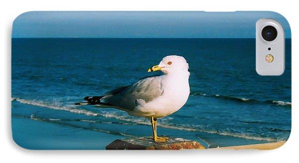 IPhone Case featuring the digital art Seagull by Kara  Stewart