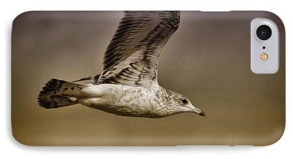 Seagull Oil IPhone Case by Deborah Benoit
