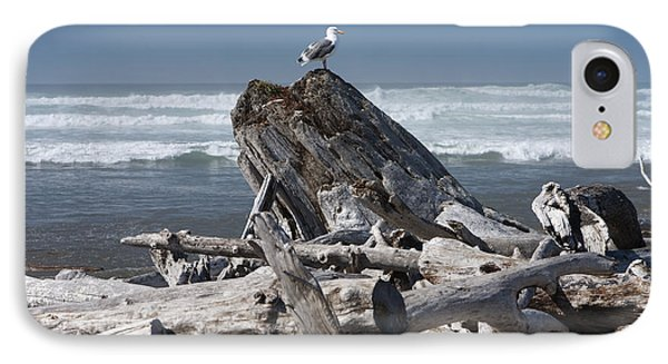 Seagull On Oregon Coast Phone Case by Peter French