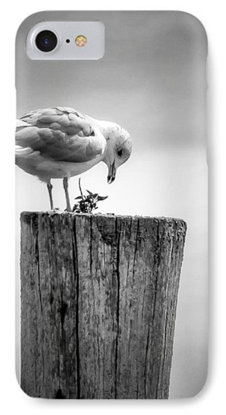 Seagull On Pier  IPhone Case