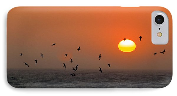 Seagull On Sunset IPhone Case