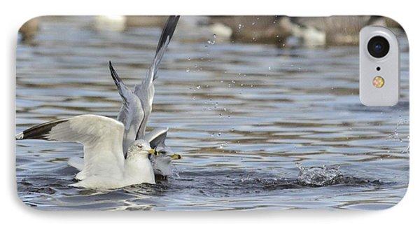 Seagull Pair  IPhone Case