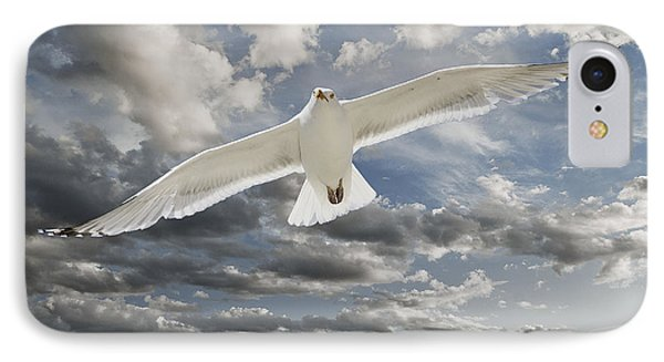 Seagull IPhone Case by Rick Mosher