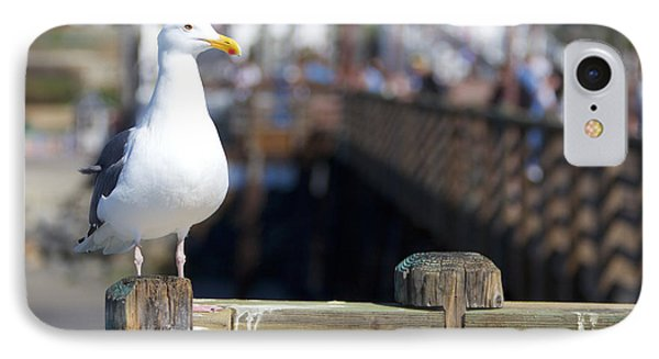 IPhone Case featuring the photograph Seagull by Robert  Aycock