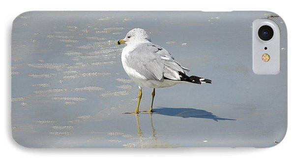 Seagull Shadows Phone Case by Rosie Brown