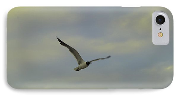 Seagull Soaring IPhone Case by Bill Cannon