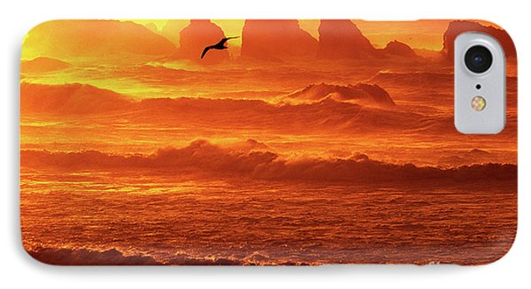 IPhone Case featuring the photograph Seagull Soaring Over The Surf At Sunset Oregon Coast by Dave Welling