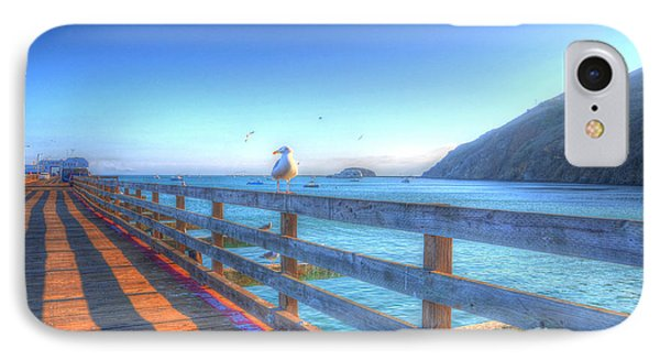 Seagulls And Ocean IPhone Case