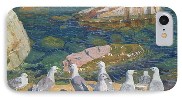 Seagulls IPhone Case by Arkadij Aleksandrovic Rylov