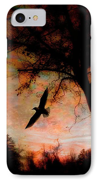 Seagulls At Dusk IPhone Case by Gothicrow Images