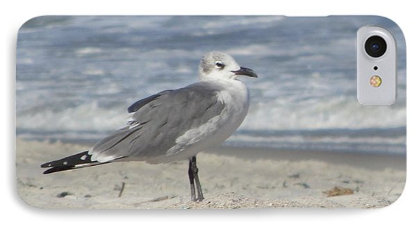 Seagulls At Fernandina 2 Phone Case by Cathy Lindsey