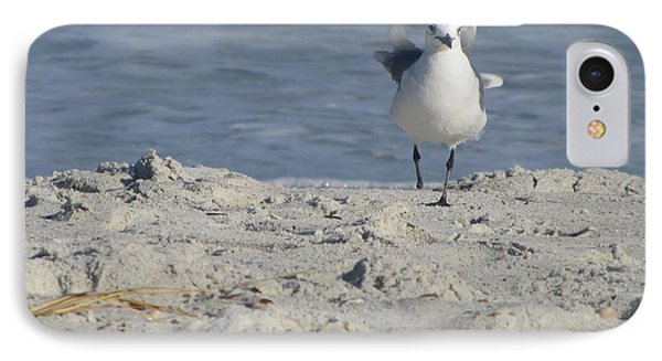 Seagulls At Fernandina 4 IPhone Case by Cathy Lindsey