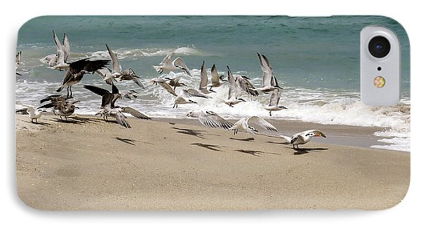 Seagulls At The Shore IPhone Case by Zina Stromberg