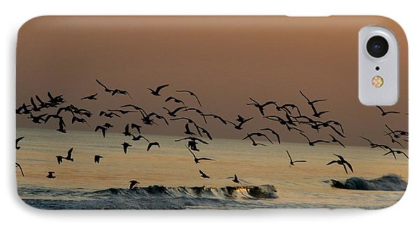 Seagulls Feeding At Dusk Phone Case by Beth Andersen