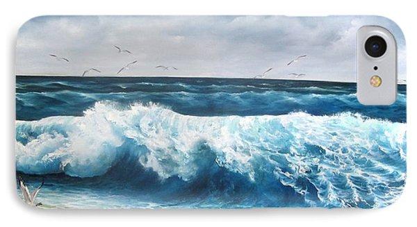 Seagulls IPhone Case by Katia Aho