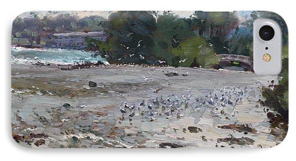 Seagulls On Niagara River IPhone Case by Ylli Haruni